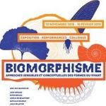 Image exposition biomorphisme